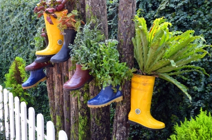 Malezja, Cameron Highlands, Cameron Lavender, osobliwe doniczki