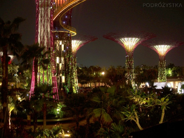Singapur, Gardens by the Bay, Supertrees