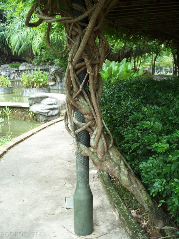 Singapur, Toa Payoh Town Park