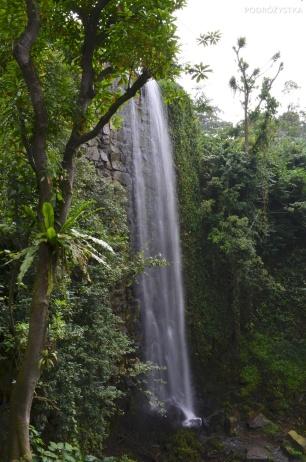 Singapur, Bird Park - Park Ptaków, wodospad