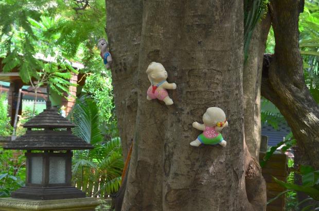 Tajlandia, wyspa Phi Phi, co autor miał na myśli?!