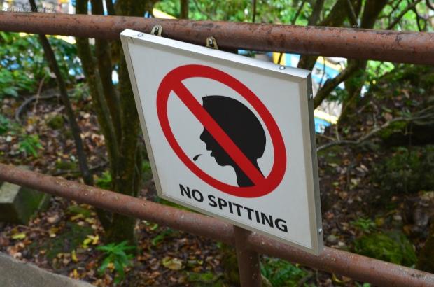 Malezja, okolice Kuala Lumpur, zakaz plucia w świątyni w Batu Caves