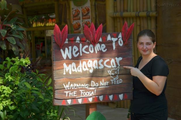 Singapur, Universal Studios, Madagaskar