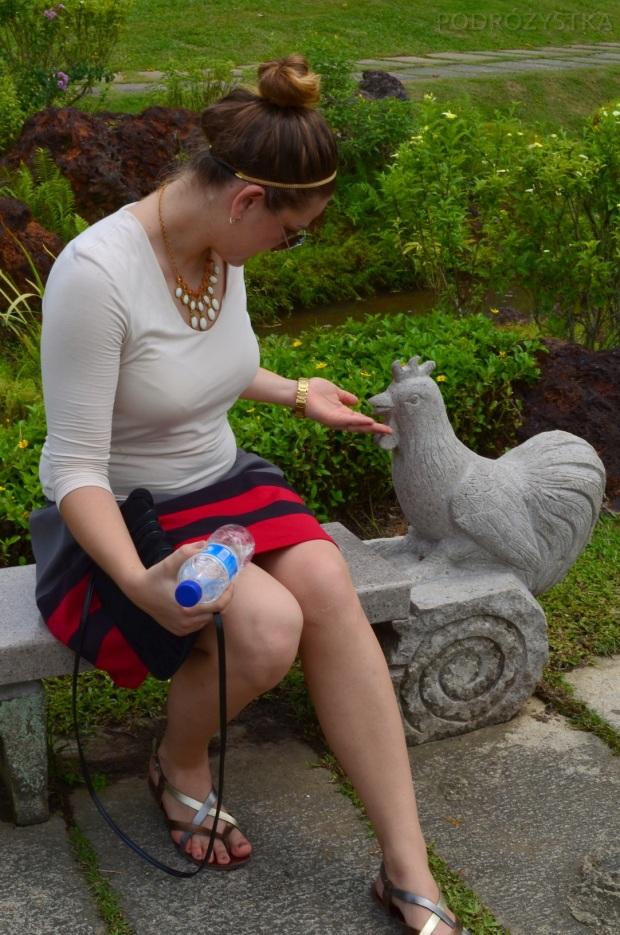 Singapur, Chinese and Japanese Garden - Ogród Chiński i Japoński - betonowe kury też można karmić