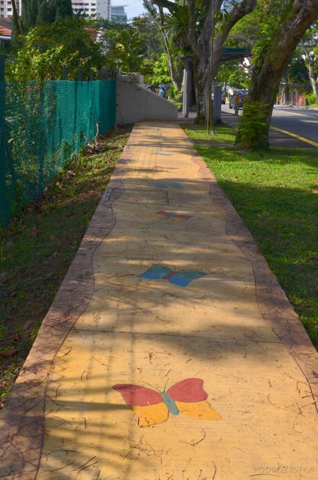 Singapur, okolice Pandan Valley, motyle na chodnikach