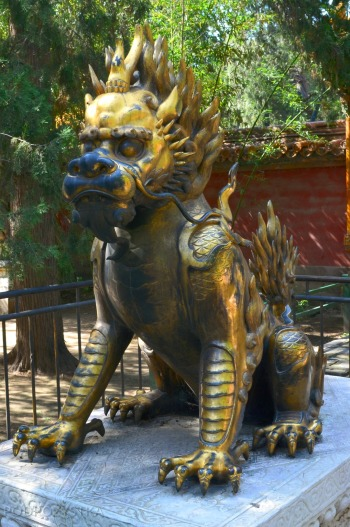 Chiny, Pekin, Zakazane Miasto, smoko-lew?