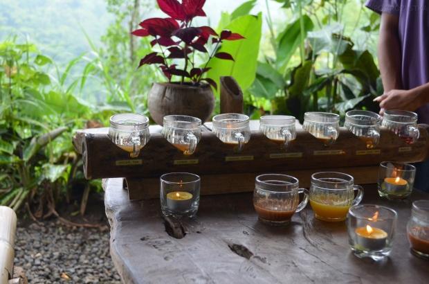 Indonezja, wyspa Bali, Laksmi Bali Agro Tourism, degustacja kawy i herbaty