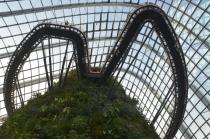 Singapur, Gardens by the Bay, Cloud Forest, taras widokowy na wysokości szczytu