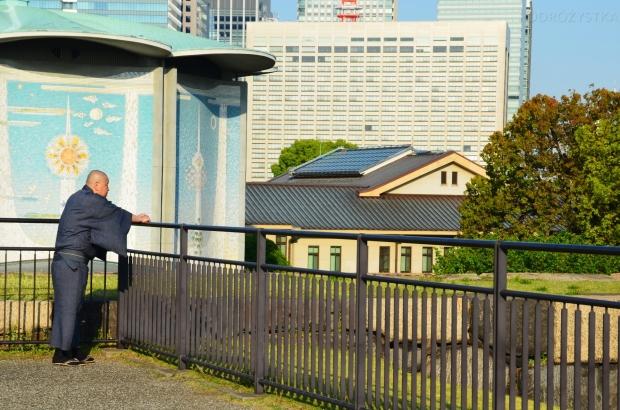 Japonia, Tokio, taras widokowy w ogrodach Pałacu Cesarskiego