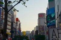Japonia, Tokio, Shibuya