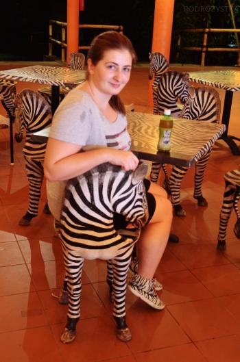 Singapur, Night Safari, zdecydowanie chcę mieć takie krzesła!
