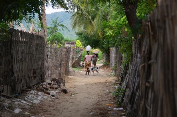 Birma (Mjanma), Mingun, lokalne gospodarstwa