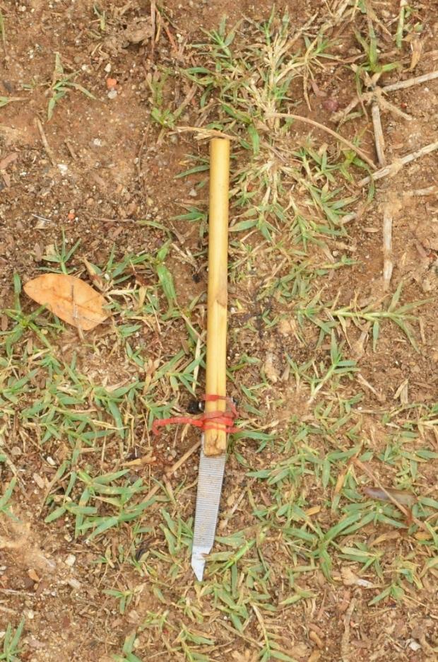 Birma (Mjanma), Mingun, co w trawie piszczy?