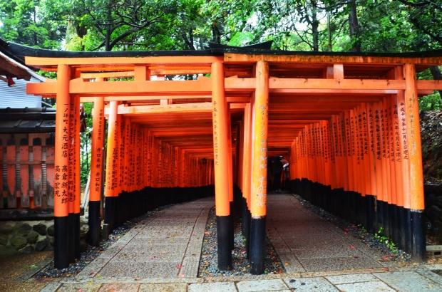 Japonia, Kyoto, Fushimi Inari-taisha, więcej torii