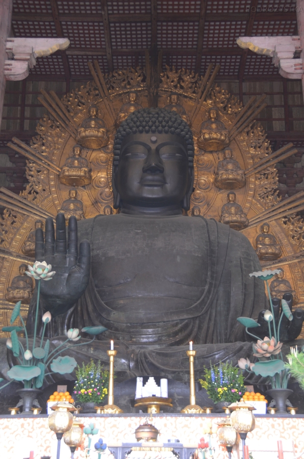 Japonia, Nara, kompleks Todai-ji, Daibutsu, czyli wielki budda
