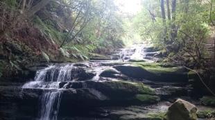 Australia, Blue Mountains, wodospady w drodze na Kiah Lookout